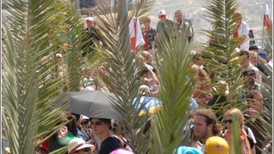 Photo of Sunday of the Palms