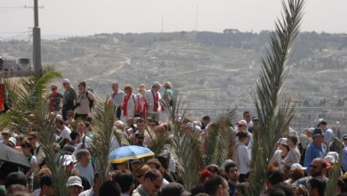 Photo of Joining the Palm Sunday Parade