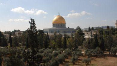 Photo of Jerusalem Knights Festival