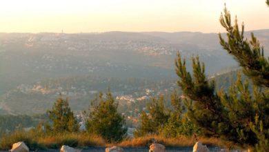 Photo of Vacation at Jerusalem